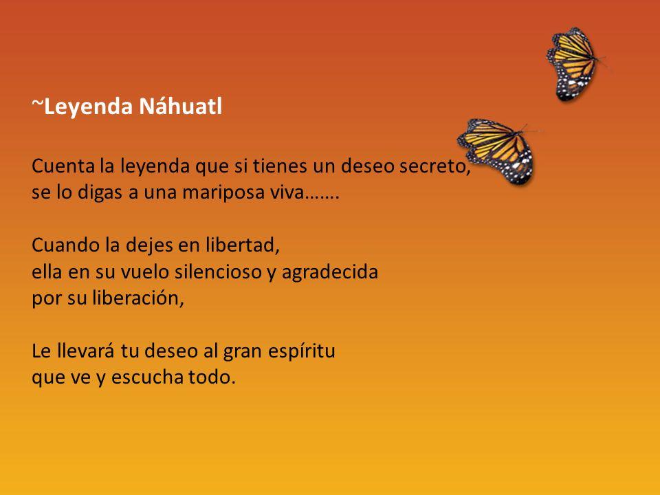 ~Leyenda Náhuatl Cuenta la leyenda que si tienes un deseo secreto, se lo digas a una mariposa viva……. Cuando la dejes en libertad, ella en su vuelo si