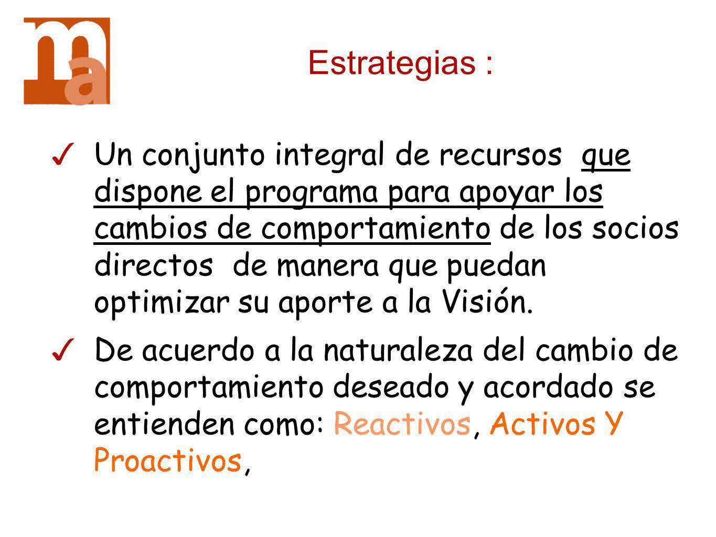 Estrategias : Un conjunto integral de recursos que dispone el programa para apoyar los cambios de comportamiento de los socios directos de manera que