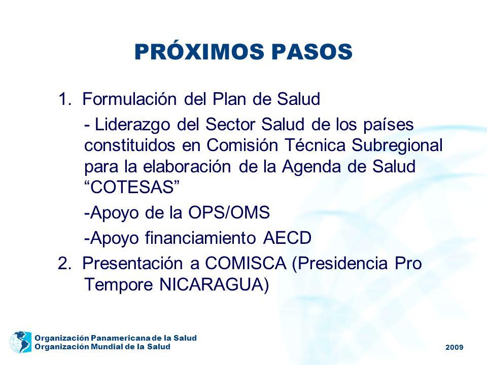 2009 Organización Panamericana de la Salud Organización Mundial de la Salud PRÓXIMOS PASOS 1. Formulación del Plan de Salud - Liderazgo del Sector Sal