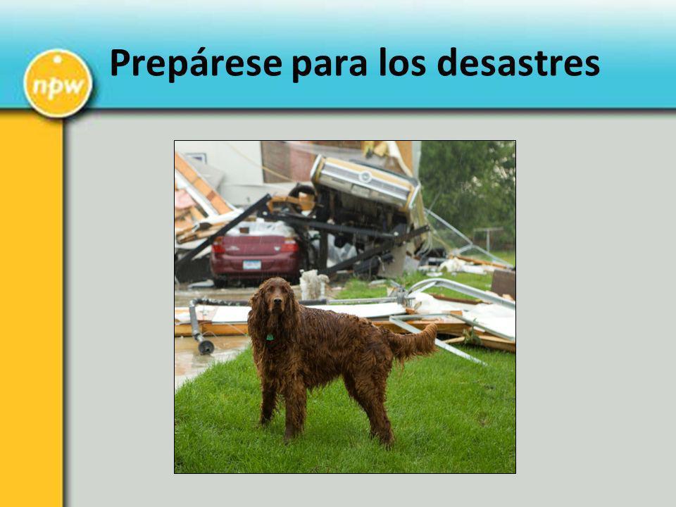 Prepárese para los desastres