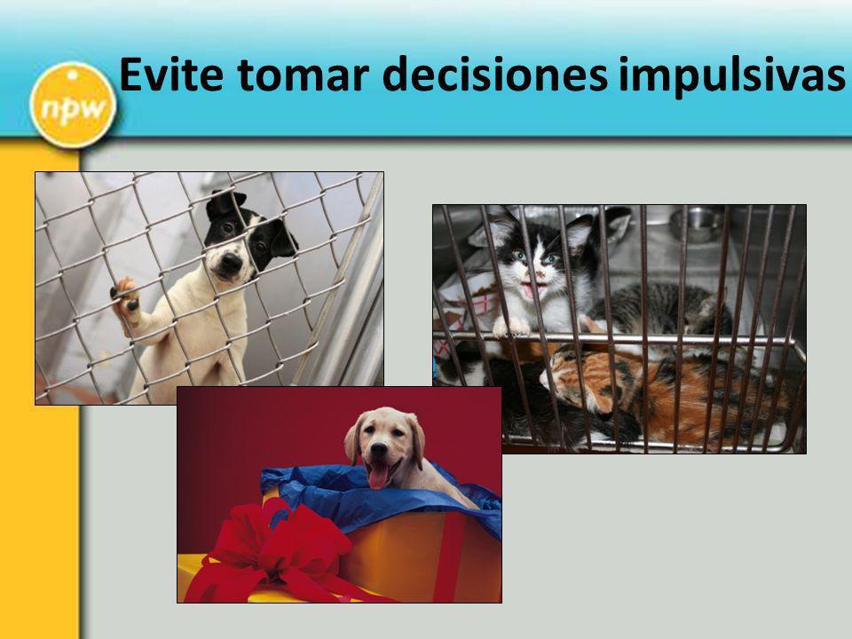 Evite tomar decisiones impulsivas
