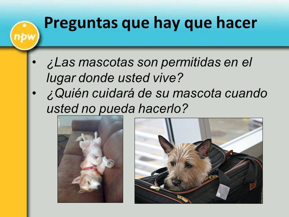 ¿Las mascotas son permitidas en el lugar donde usted vive? ¿Quién cuidará de su mascota cuando usted no pueda hacerlo? Preguntas que hay que hacer