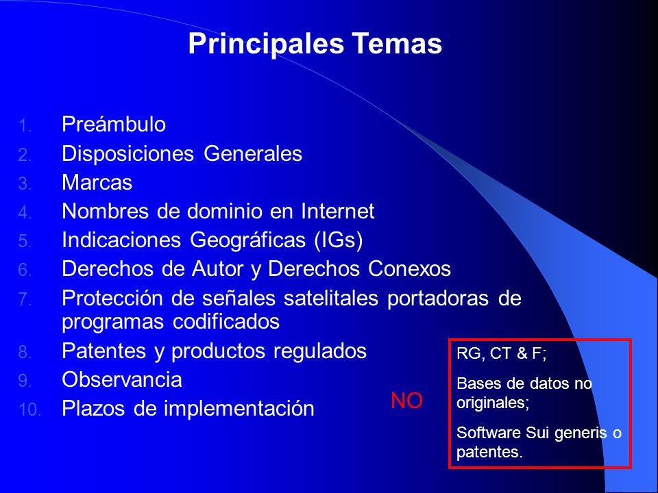Principales Temas 1. Preámbulo 2. Disposiciones Generales 3. Marcas 4. Nombres de dominio en Internet 5. Indicaciones Geográficas (IGs) 6. Derechos de