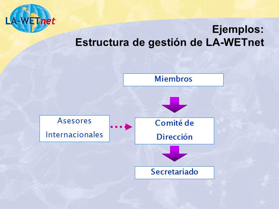 Miembros Comité de Dirección Secretariado Asesores Internacionales Ejemplos: Estructura de gestión de LA-WETnet