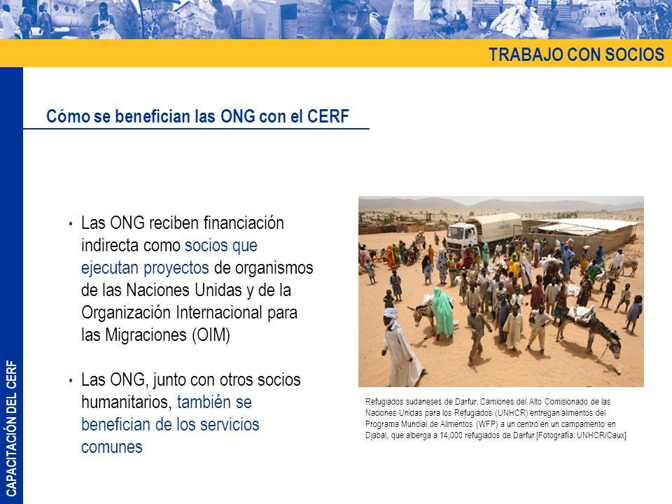 CAPACITACIÓN DEL CERF Propuesta por parte de los líderes de grupos de proyectos de ONG independientes para financiar y asistir en el envío de fondos a las ONG Buscar un agente administrativo; por ejemplo, el Programa de las Naciones Unidas para el Desarrollo (UNDP) propuso proyectos de ONG para la financiación y luego transfirió el dinero a las ONG para la implementación Acceso a otros fondos comunes (Fondos de Respuesta a Emergencias [ERF] y Fondos Humanitarios Comunes [CHF]) TRABAJO CON SOCIOS Alternativas para acceder al CERF