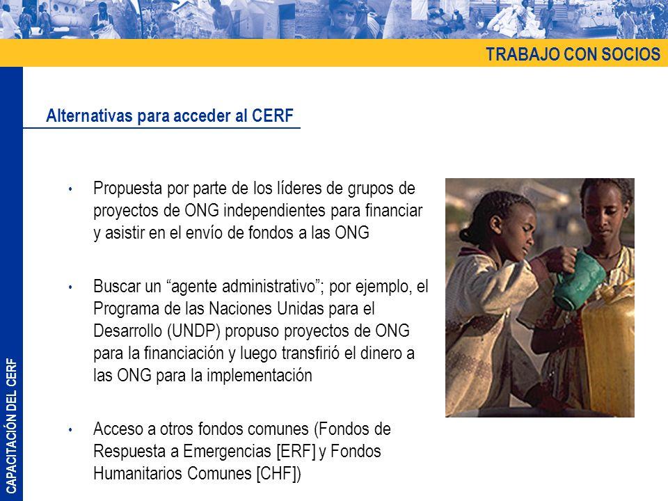CAPACITACIÓN DEL CERF Propuesta por parte de los líderes de grupos de proyectos de ONG independientes para financiar y asistir en el envío de fondos a