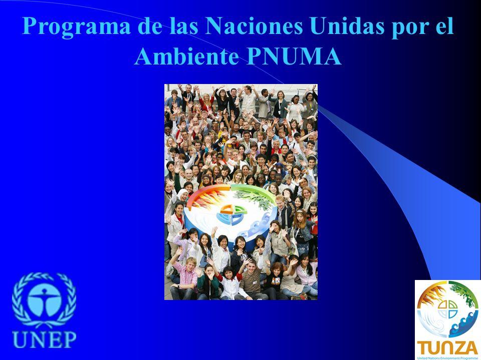 Programa de las Naciones Unidas por el Ambiente PNUMA