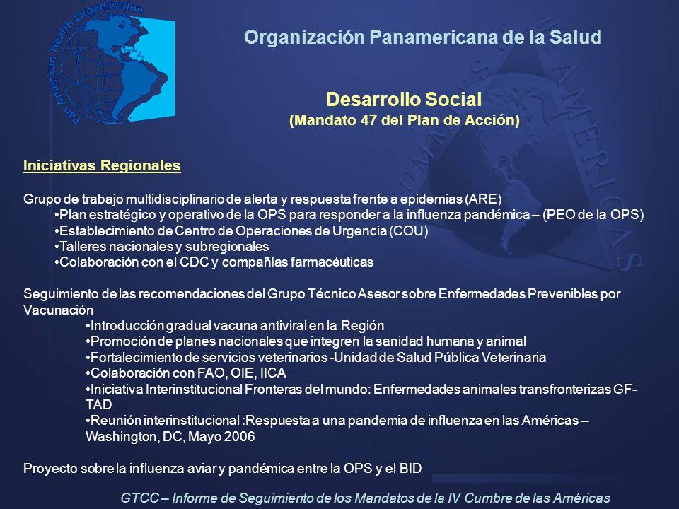 Organización Panamericana de la Salud Desarrollo Social (Mandato 47 del Plan de Acción) Iniciativas Regionales Grupo de trabajo multidisciplinario de