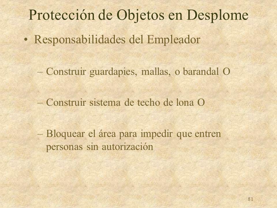 80 Protección de Objetos en Desplome ¡Use un casco!