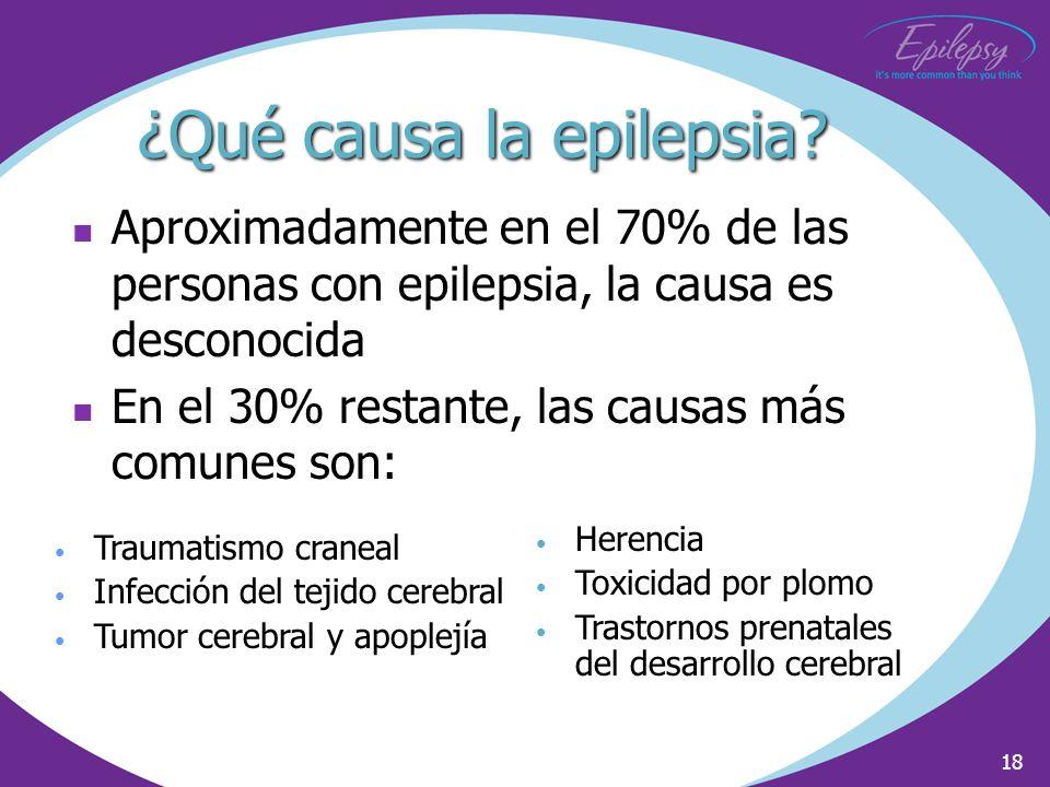 18 ¿Qué causa la epilepsia? Aproximadamente en el 70% de las personas con epilepsia, la causa es desconocida En el 30% restante, las causas más comune