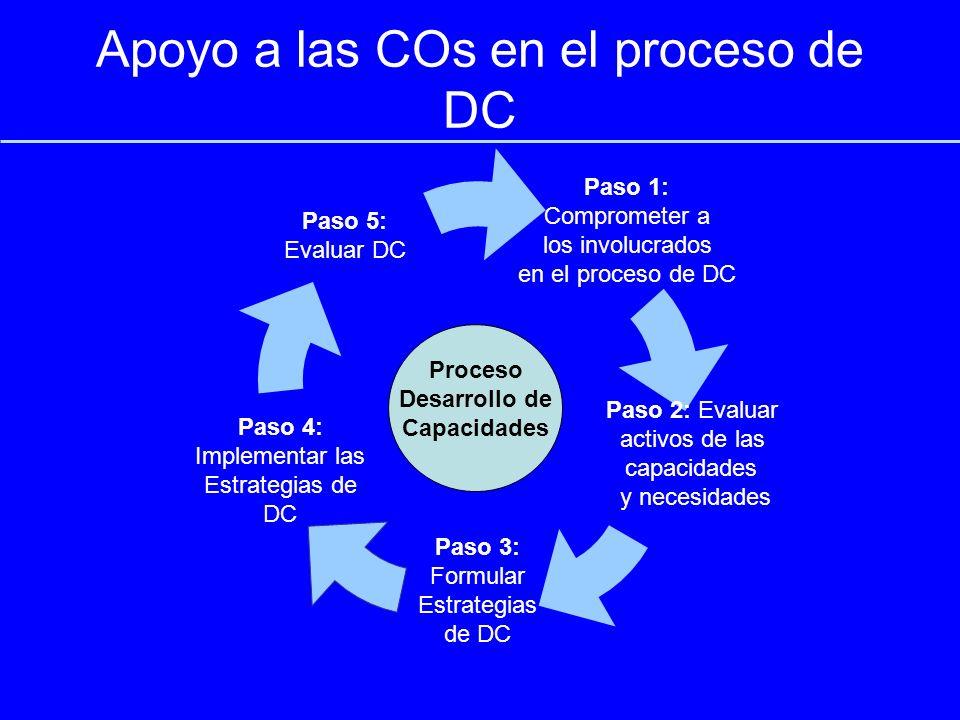 Apoyo a las COs en el proceso de DC Paso 3: Formular Estrategias de DC Paso 4: Implementar las Estrategias de DC Paso 1: Comprometer a los involucrados en el proceso de DC Paso 5: Evaluar DC Paso 2: Evaluar activos de las capacidades y necesidades Proceso Desarrollo de Capacidades