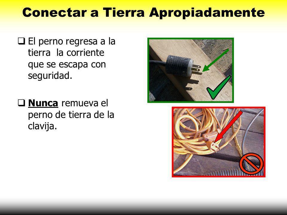 Conectar a Tierra Apropiadamente El equipo eléctrico debe estar conectado a tierra apropiadamente. Conectar a tierra reduce el riesgo de ser electrocu