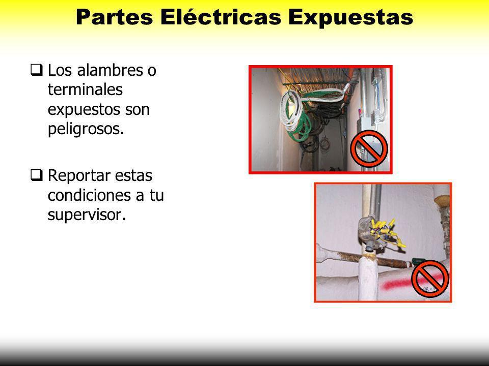 Quitar el perno de tierra elimina una característica muy importante de seguridad Puedes recibir un choque eléctrico! Conectar a Tierra Apropiadamente
