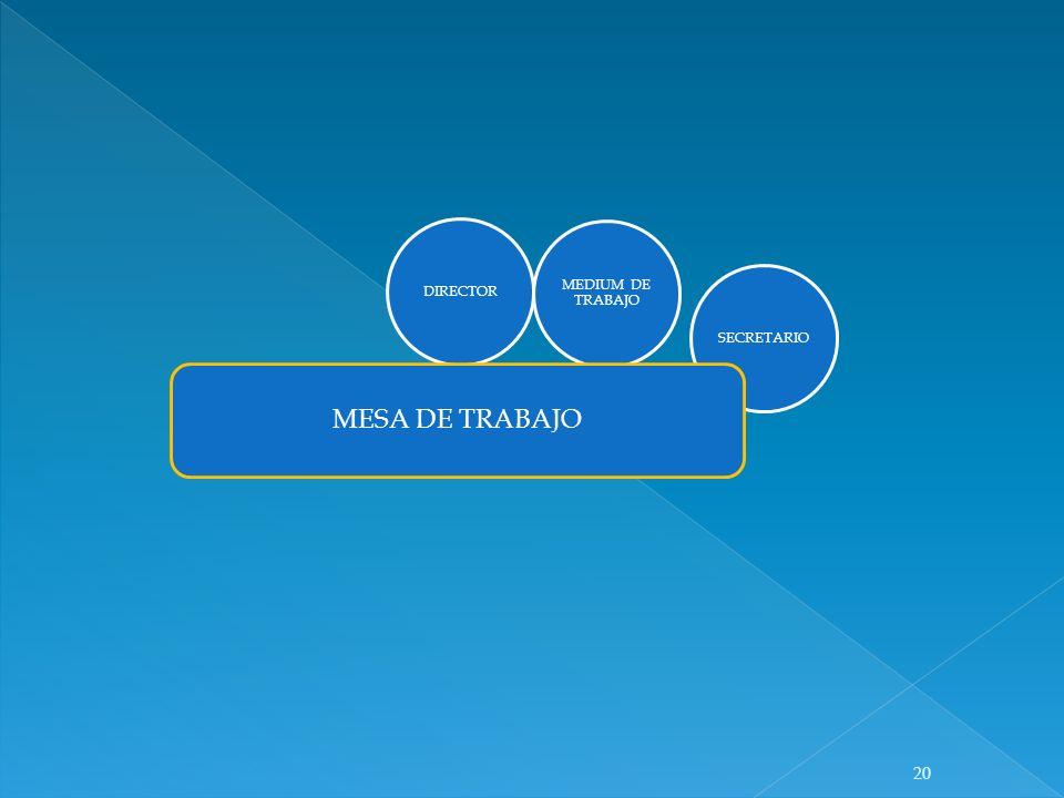 DIRECTOR MEDIUM DE TRABAJO SECRETARIO MESA DE TRABAJO 20