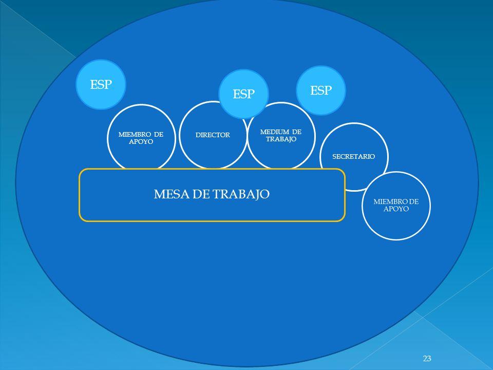 DIRECTOR MEDIUM DE TRABAJO MIEMBRO DE APOYO SECRETARIO MESA DE TRABAJO 23