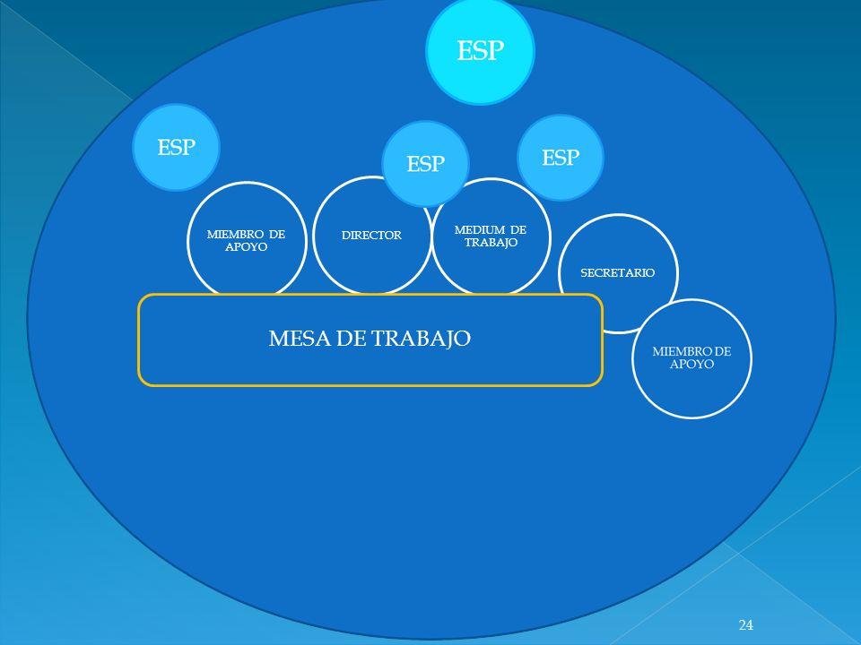 DIRECTOR MEDIUM DE TRABAJO MIEMBRO DE APOYO SECRETARIO MESA DE TRABAJO 24