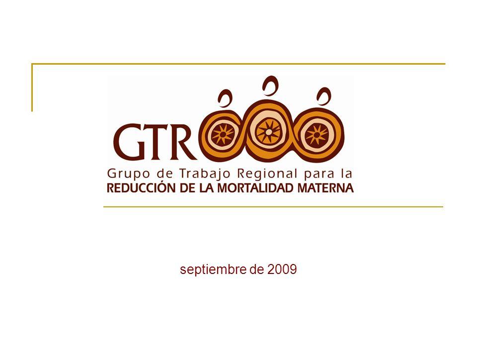 DCEI: Avances 2003-2008 Lanzamientos nacionales y distritales del DCEI Talleres nacionales para analizar recomendaciones y promover políticas y estrategias priorizadas Consulta Técnica Regional: Atención Calificada del Parto en ALC (Santa Cruz, Bolivia, 2003)
