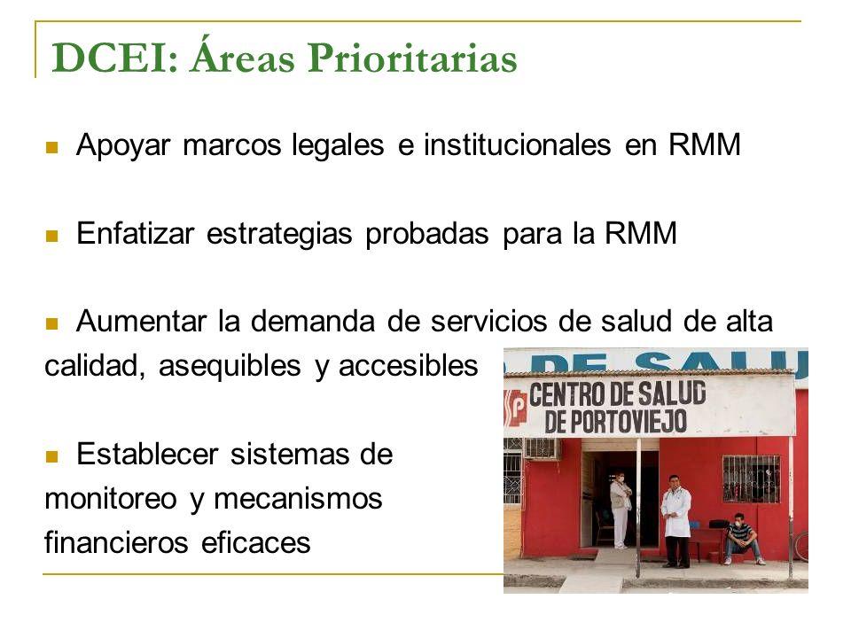 DCEI: Áreas Prioritarias Apoyar marcos legales e institucionales en RMM Enfatizar estrategias probadas para la RMM Aumentar la demanda de servicios de