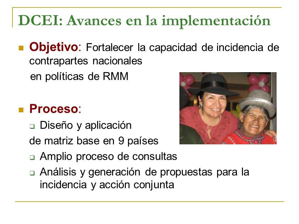 DCEI: Avances en la implementación Objetivo: Fortalecer la capacidad de incidencia de contrapartes nacionales en políticas de RMM Proceso: Diseño y ap