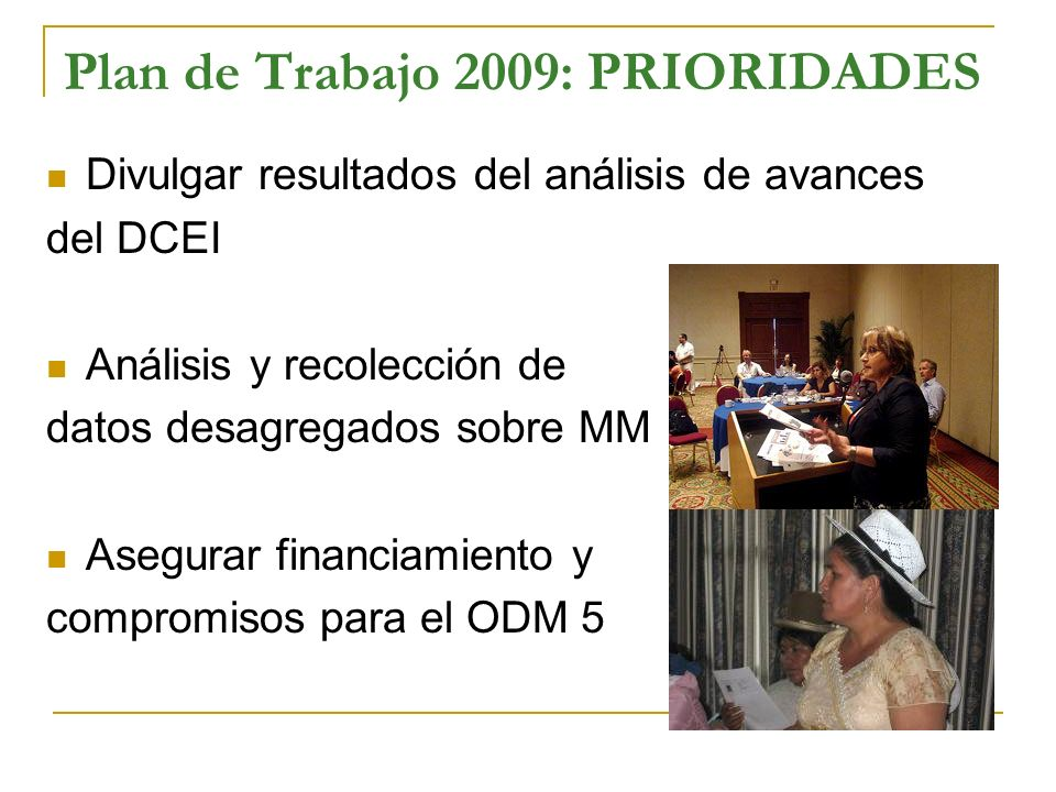 Plan de Trabajo 2009: PRIORIDADES Divulgar resultados del análisis de avances del DCEI Análisis y recolección de datos desagregados sobre MM Asegurar