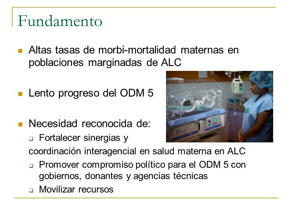 Fundamento Altas tasas de morbi-mortalidad maternas en poblaciones marginadas de ALC Lento progreso del ODM 5 Necesidad reconocida de: Fortalecer sine