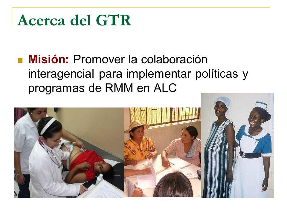 Mirando hacia el futuro Movilizar financiamiento Incidir regionalmente en plataformas globales Enfocar la salud materna como un derecho humano Generar compromisos políticos para la RMM Forjar alianzas interagenciales para lograr las metas del ODM 5