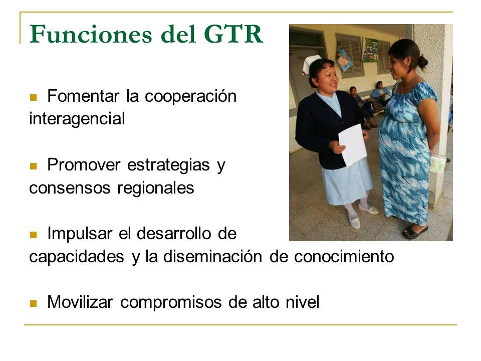 Funciones del GTR Fomentar la cooperación interagencial Promover estrategias y consensos regionales Impulsar el desarrollo de capacidades y la disemin