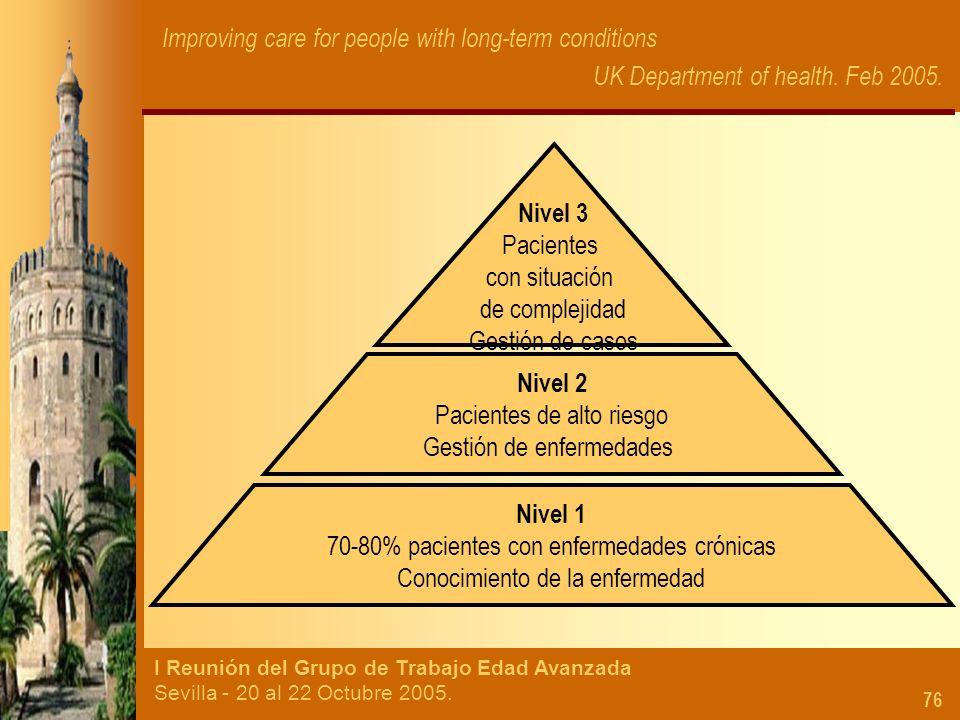 I Reunión del Grupo de Trabajo Edad Avanzada Sevilla - 20 al 22 Octubre 2005. 76 Nivel 1 70-80% pacientes con enfermedades crónicas Conocimiento de la