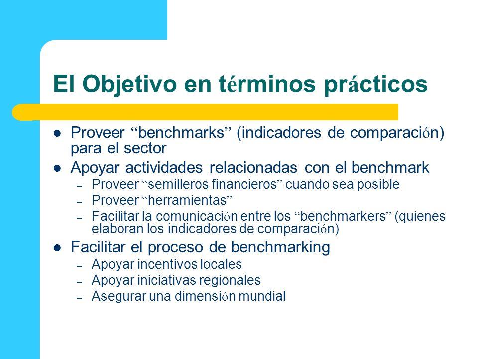 El Objetivo en t é rminos pr á cticos Proveer benchmarks (indicadores de comparaci ó n) para el sector Apoyar actividades relacionadas con el benchmar
