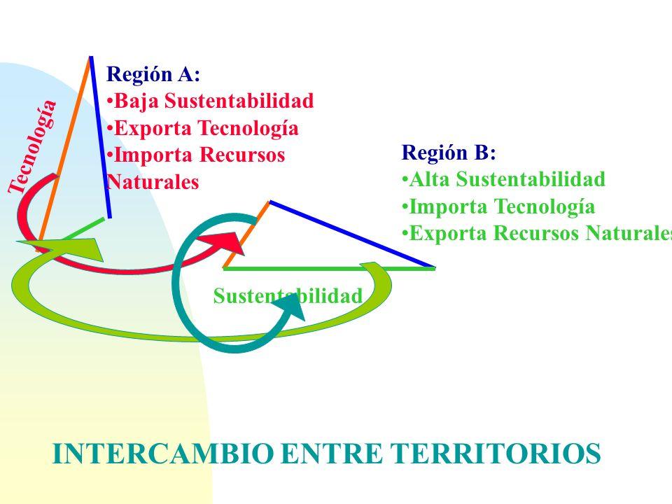 n Además la sustentabilidad ambiental esta vinculada a: n Niveles de calidad de vida n Dinámica del conocimiento n Intercambio entre territorios n Glo
