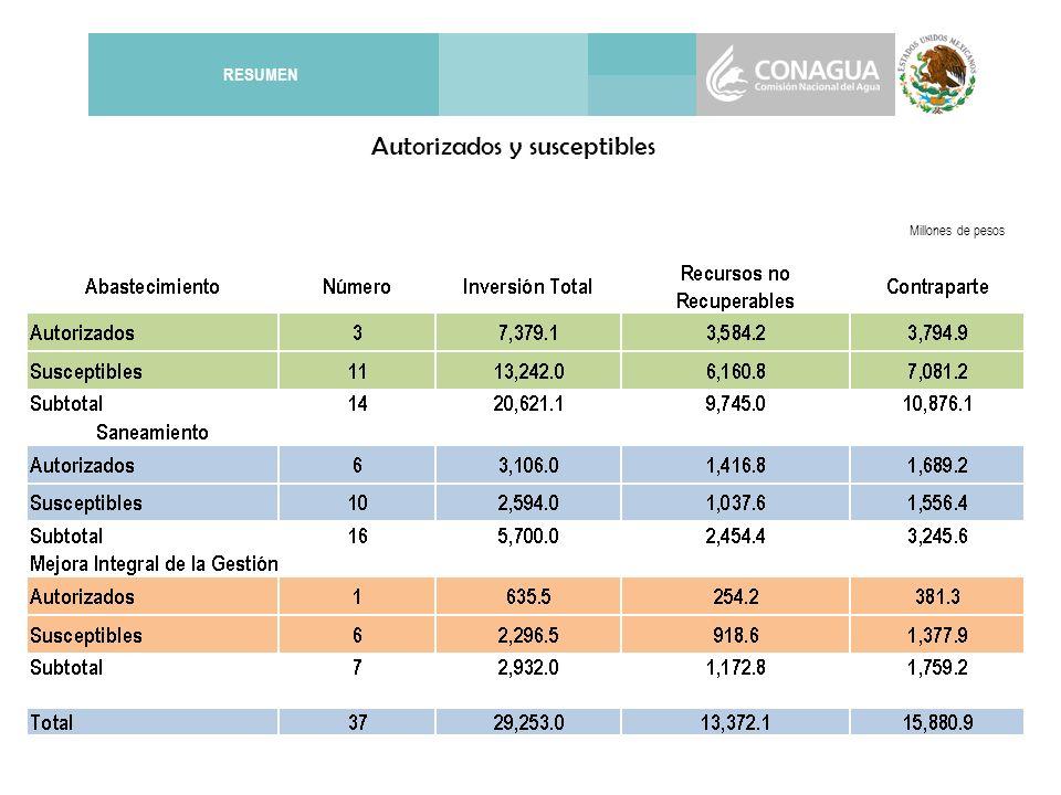 RESUMEN Millones de pesos Autorizados y susceptibles