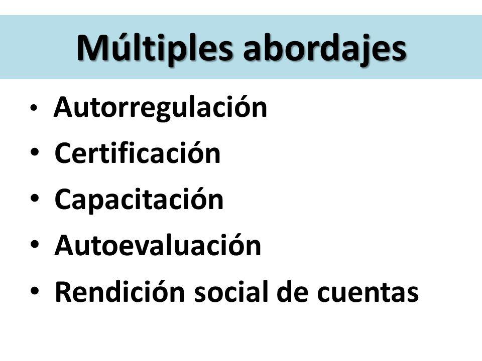 Cuatro hilos conductores Autorregulación Certificación Capacitación Autoevaluación Rendición social de cuentas Múltiples abordajes