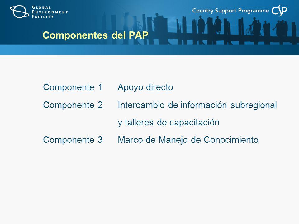 Componentes del PAP Componente 1Apoyo directo Componente 2Intercambio de información subregional y talleres de capacitación Componente 3Marco de Manej