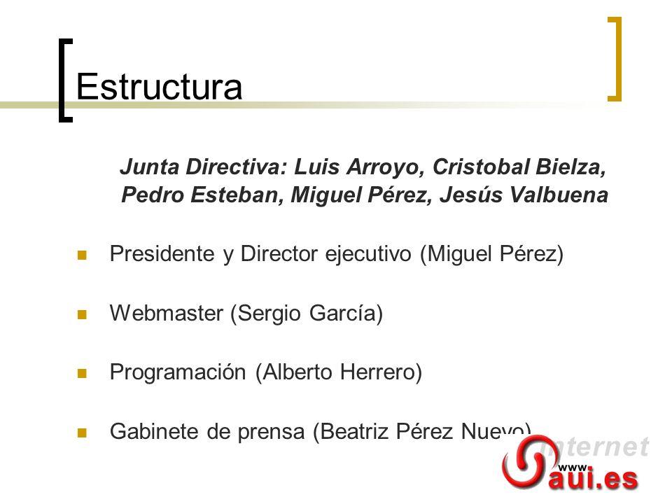 Estructura Junta Directiva: Luis Arroyo, Cristobal Bielza, Pedro Esteban, Miguel Pérez, Jesús Valbuena Presidente y Director ejecutivo (Miguel Pérez)