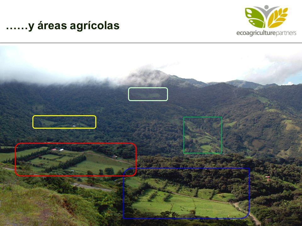……y áreas agrícolas