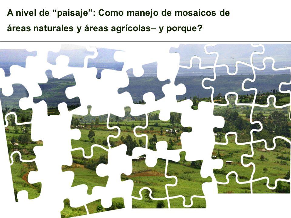 A nivel de paisaje: Como manejo de mosaicos de áreas naturales y áreas agrícolas– y porque?