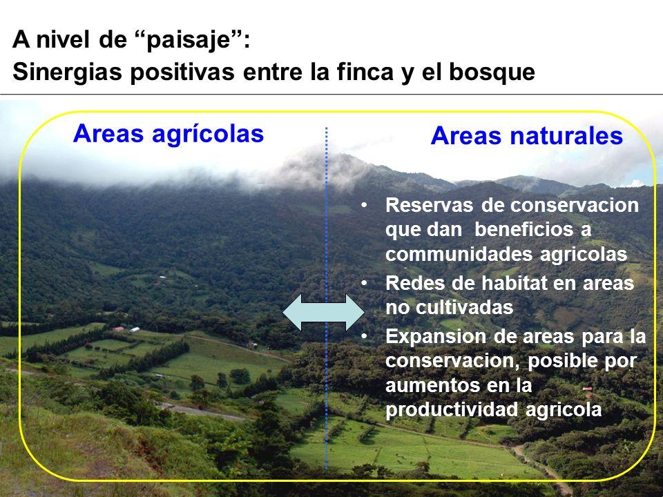 A nivel de paisaje: Sinergias positivas entre la finca y el bosque Areas naturales Reservas de conservacion que dan beneficios a communidades agricola