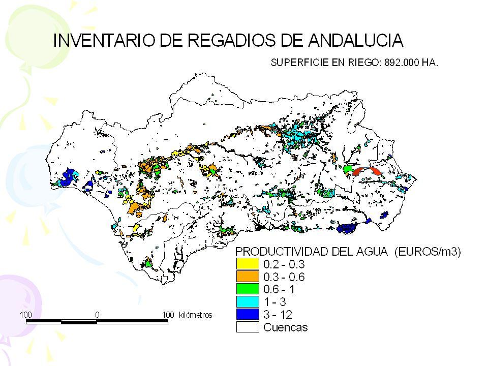 4. ECONOMÍA DEL AGUA b) Flexibilización del régimen concesional: debate sobre los mercados del agua. Reasignación administrativa Convenios de cesión.
