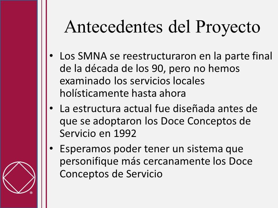 Antecedentes del Proyecto Los SMNA se reestructuraron en la parte final de la década de los 90, pero no hemos examinado los servicios locales holístic