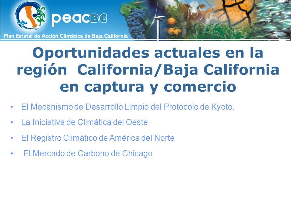 Hacia una visión compartida entre California/Baja California sobre cuestiones de cambio climático Para coordinar los esfuerzos conjuntos Para colaborar en emisiones de GEI en ambos lados de la Frontera Para colaborar en proyectos de mitigación y adaptación Para alcanzar esquemas regionales de comercio de carbono, incorporando aspectos sociales y económicos.