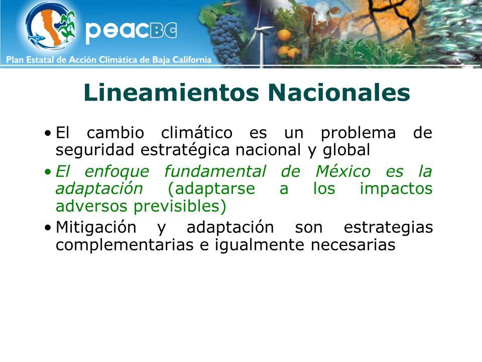 Lineamientos de Mitigación ENERGÍA: incrementar eficiencia energética, utilizar fuentes renovables de energía, iniciar un proceso paulatino de valoración del carbono en la economía nacional y de descarbonización energética Mitigación en generación y uso energía: posibilidad evitar ~100 [50, 120] Mt de CO2e/año, hacia el horizonte 2014: CONAE-FIDE (Eficiencia Energética): 28 PEMEX: 15 CFE-LFC (Producción - Distribución): 27 Sector Industrial (Cogeneración): 25 Fuentes Renovables Energía: 8 Transporte (Deschatarrización): 4