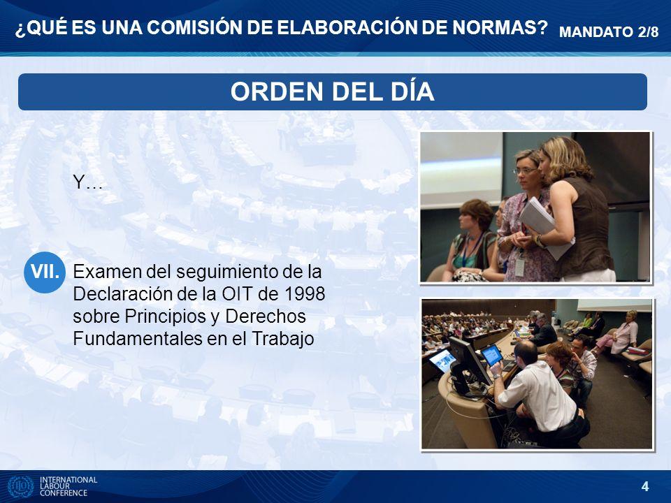 4 ¿QUÉ ES UNA COMISIÓN DE ELABORACIÓN DE NORMAS? ORDEN DEL DĺA Y… Examen del seguimiento de la Declaración de la OIT de 1998 sobre Principios y Derech