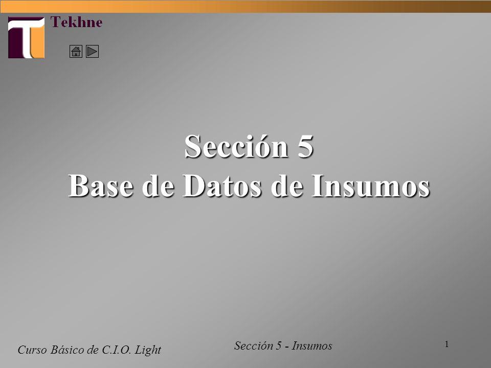 1 Curso Básico de C.I.O. Light Sección 5 Base de Datos de Insumos Sección 5 - Insumos