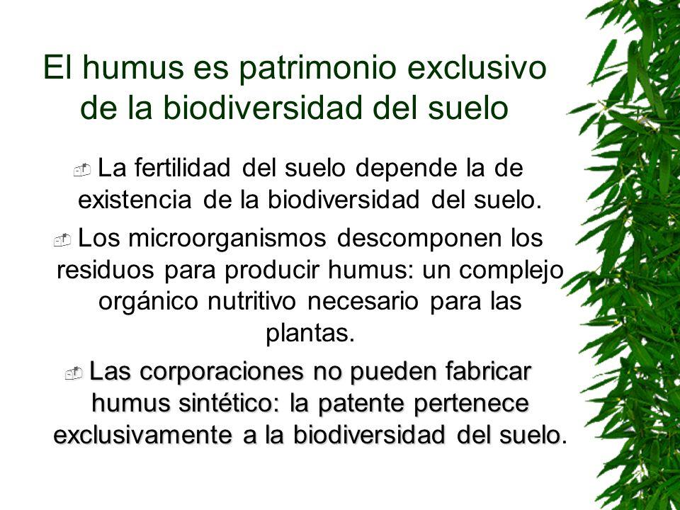 El humus es patrimonio exclusivo de la biodiversidad del suelo La fertilidad del suelo depende la de existencia de la biodiversidad del suelo. Los mic