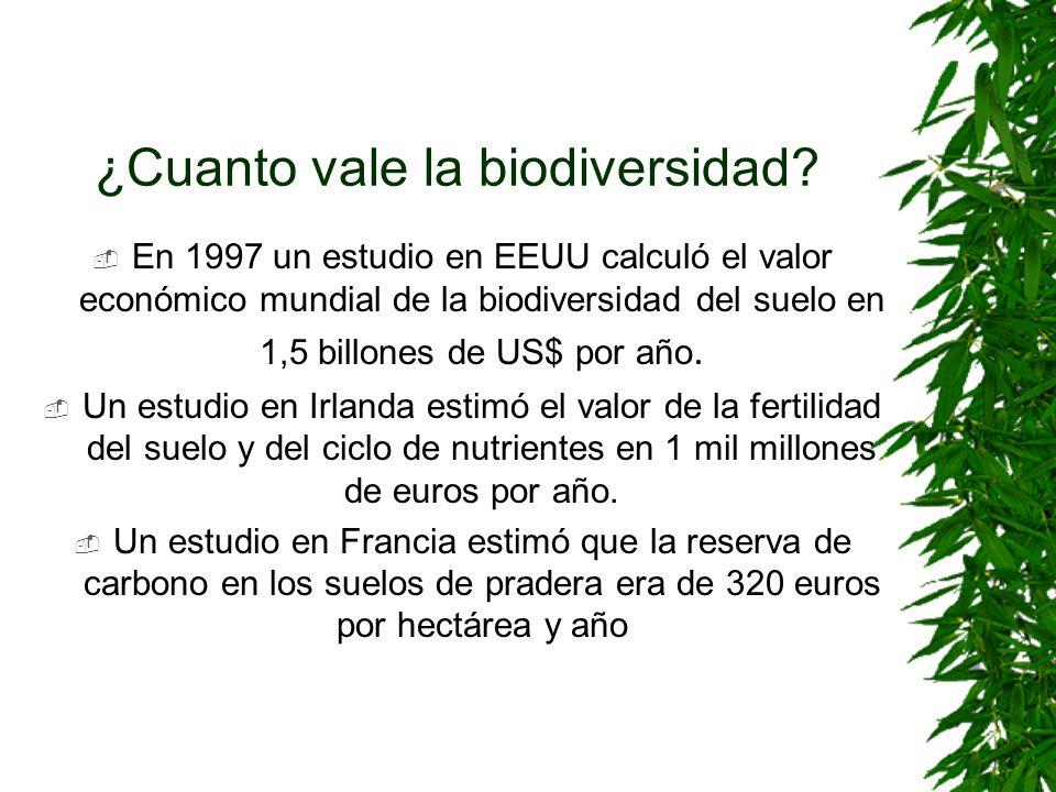 ¿Cuanto vale la biodiversidad? En 1997 un estudio en EEUU calculó el valor económico mundial de la biodiversidad del suelo en 1,5 billones de US$ por