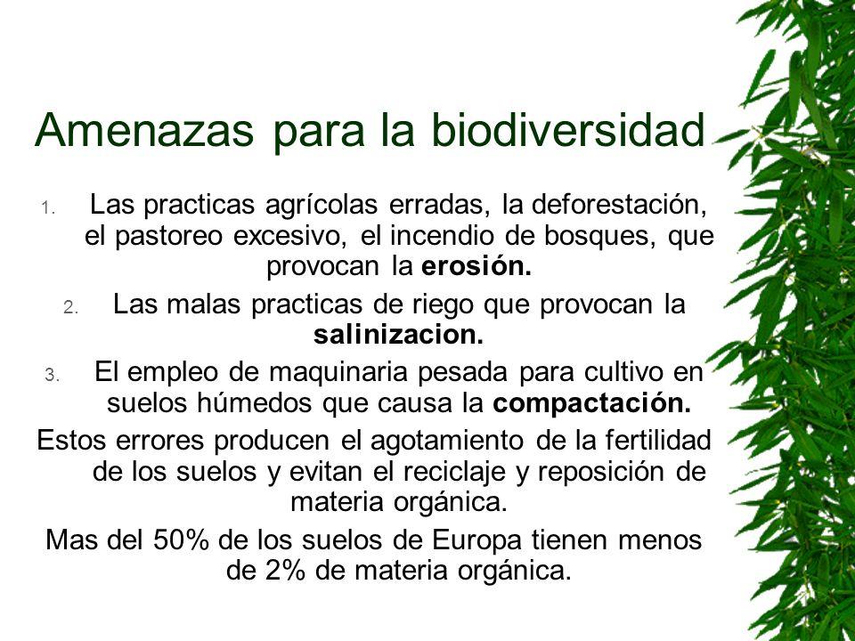 Amenazas para la biodiversidad 1. Las practicas agrícolas erradas, la deforestación, el pastoreo excesivo, el incendio de bosques, que provocan la ero