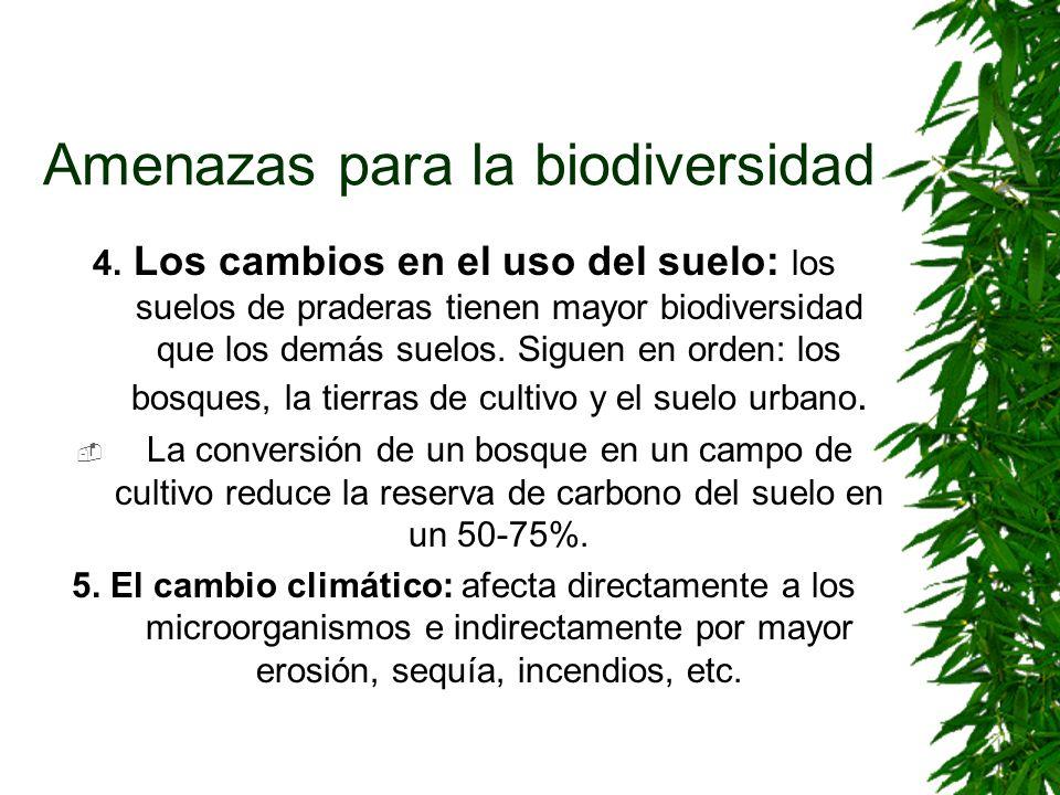 Amenazas para la biodiversidad 4. Los cambios en el uso del suelo: los suelos de praderas tienen mayor biodiversidad que los demás suelos. Siguen en o