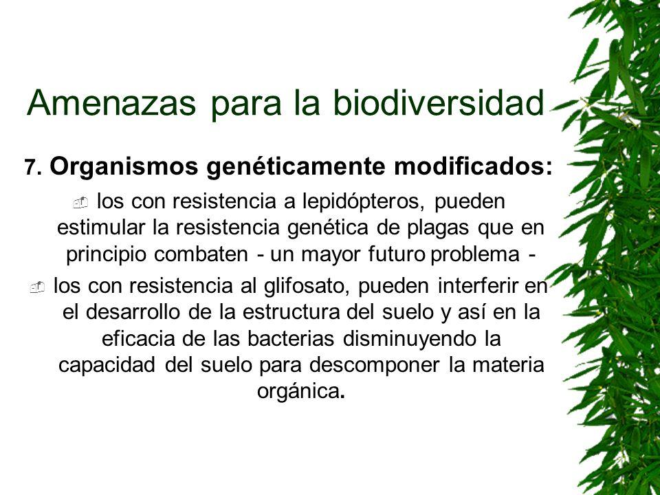 Amenazas para la biodiversidad 7. Organismos genéticamente modificados: los con resistencia a lepidópteros, pueden estimular la resistencia genética d