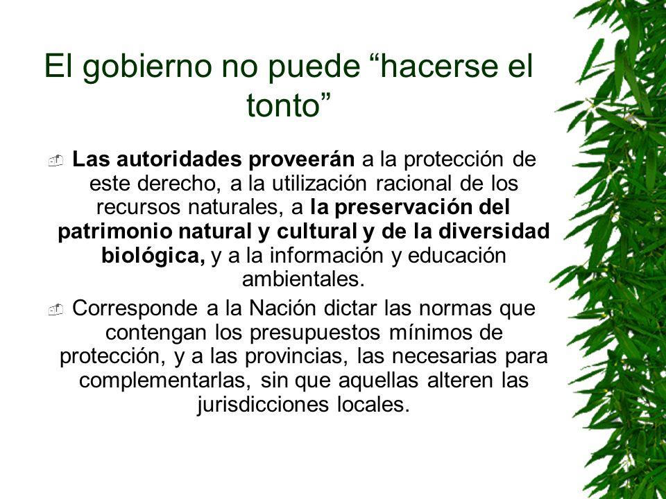 El gobierno no puede hacerse el tonto Las autoridades proveerán a la protección de este derecho, a la utilización racional de los recursos naturales,