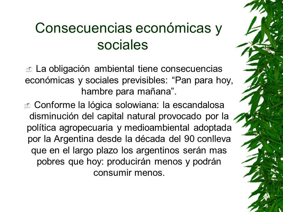 Consecuencias económicas y sociales La obligación ambiental tiene consecuencias económicas y sociales previsibles: Pan para hoy, hambre para mañana. C